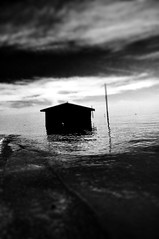 Floater (Jeff T. Alu) Tags: photoshop black white digital house flood building surreal moody lonely dark outdoors bleak blackandwhite deserted illusion zen medetation medetate power impact graphic doom bright earthy dirt gritty intense visionary heat passion 4x4 remote california desolate dreamy nightmare euphoric