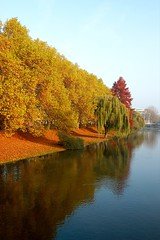 Neckar in Autumn (allanimal) Tags: reflection river germany geotagged fallcolors neckar heilbronn badenwrttemberg allanimal geo:lat=49139983 geo:lon=9214048