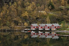 Flam - Autumn - Norway ({ Planet Adventure }) Tags: travel autumn favorite reflection travelling fall 20d beautiful norway reflections ilovenature eos amazing cool holidays flickr diverse exploring great diversity ab fave adventure backpacking winner stunning planet iwasthere myfavorites tagging canoneos allrightsreserved flam myfaves havingfun adventuring aroundtheworld yourfavorites onflickr copyright visittheworld aroundtheglobe travelphotos 200mostinteresting facinating traveltheworld specialplaces travelphotographs canonphotography 86points alwaysbecapturing worldtraveller visitnorway planetadventure lovephotography beautyissimple peoplesfavourites theworlthroughmyeyes tedesafio challengeyouwinner selectedasfave peopleseemtolike supperb flickriscool loveyourphotos theworldthroughmylenses greatcaptures shotingtheworld by{planetadventure} byalessandrobehling icanon icancanon canonrocks selftaughtphotographer phographyisart travellingisfun adventuringaroundtheglobe copyright20002006alessandroabehling allinteresting allnorway greatnorway justnorway