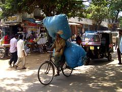 SILK09 (Paul Bolding) Tags: ramanagaram karnataka india silk