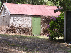 0223-shed (shimmertje) Tags: whangarei new zealand 204
