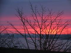 Good morning Sunrise! (Bastian Karl) Tags: sky red redsky sunrise fog water viewfromapartment almere