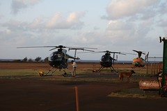 Helicoptors at the Port Allen airport (Mmmonica) Tags: helicopter kauai helicoptertour hawaii200601 portallenairport