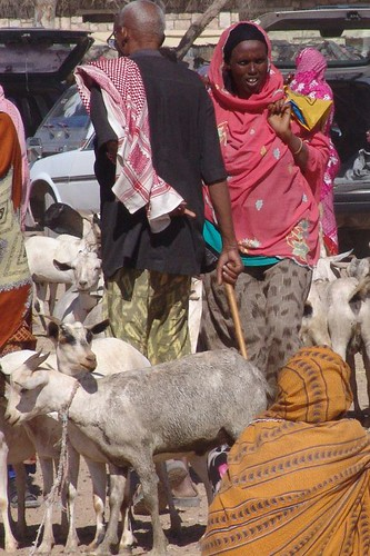 Colours at the goat market