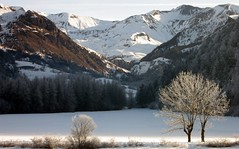 Valle de la Rouanne, Alps (Pierre Metivier) Tags: winter mountain snow france alps alpes landscape s80 ancelle hautesalpes rouanne