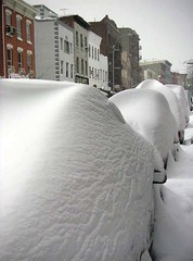 Car humps (darwinism) Tags: white snow brooklyn 2006 williamsburg blizzard newyorkblizzard