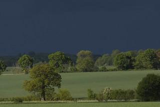 Suffolk fieldscape
