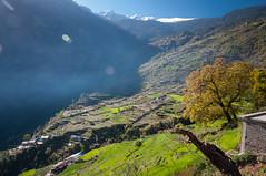 06042015-DSC_6845.jpg (seb.grd) Tags: nepal vacances np npal langtang centralregion thulosyabru