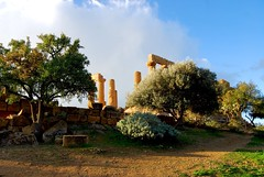 Valley of the Temples, Agrigentum, Sicily (Andy Montgomery) Tags: italy europe sicily greektemple agrigentum