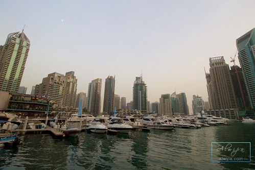 "Dubai Marina • <a style=""font-size:0.8em;"" href=""http://www.flickr.com/photos/104879414@N07/19610506563/"" target=""_blank"">View on Flickr</a>"