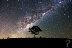 One Tree Hill (dualiti.net) Tags: city sky silhouette night way stars wonder amazing glow australia southern awe milky