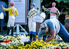 Moreno's Lawn Jockey is about to be removed (EASY GOER) Tags: summer vacation horses horse ny newyork sports beauty race canon athletics track saratoga competition upstate running racing course event 5d ponies athletes tradition races sporting spa thoroughbred equine exciting thoroughbreds markiii