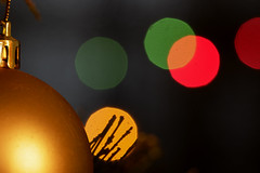 Holiday bokeh (explored) (Nick.Ramsey) Tags: canonef100mmf28lmacro christmas eos7dmarkii macro nickramsey bokeh fairy lights macromondays explored explore