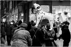 Uaauuuuuuuuuuu! (Roberto Spagnoli) Tags: people gente fotografiadistrada streetphotography biancoenero blackandwhite cane dog palloncino balloon evening lights