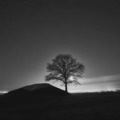 Mono tree (Budoka Photography) Tags: monochrome moon sky stars serene night landscape nature outdoor blackandwhitephotos bw blackandwhite budokaphotography nightphoto nightheaven nightsky nightlights december longexposure le manual tree rönnebergabackar silhouette tranquility tripod manualfocus sweden dusk samyang14mmf28 sonyalphailce7rm2