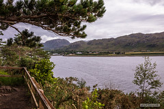 Poolewe. (Scotland by NJC.) Tags: coastline shoreline seashore coast shore seaboard seaside beach strand inverewegardens poolewe scotland trees foliage vegetation arboretum شَجَرَة árvore 树 drvo strom træ boom árbol puu arbre baum δέντρο albero 木 나무 tre drzewo copac дерево mountains hills highlands peaks fells massif pinnacle ben munro heights جَبَلٌ montanha 山 planina hora bjerg berg montaña vuori montagne βουνό montagna fjell