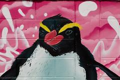 Wall art Napier (alanrharris53) Tags: newzealand nz 2016 napier wall art penguin crested