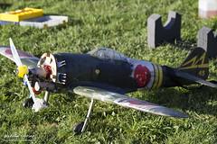 "Mitsubishi A6M ""Zero"" (Natalia Sobrino) Tags: aeromodel aeromodelismo corsair zero mitshubishi mitsubishi a6m vought chance f4u mustang p51 piper j3 cub radio control radiocontrol rc rcmodel aviones planes aircraft avion plane"