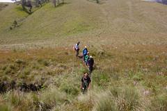 Savana walk, Bromo-Tengger-Semeru National Park (elly.sugab) Tags: hiking mountaineering mountain walking grassland savana meadow hiker semeru ranukumbolo family travelling