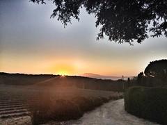 Mont Ventoux à l'aube (anthonywmthomas) Tags: mont ventoux aube sun set provence paysage