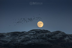 Summit Rise (ibriphotos) Tags: dumyat ochilhills moon summit moonrise snow