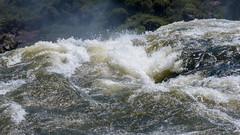 L1060538.jpg (gpparker) Tags: iguaçu waterfall brazil iguassufalls