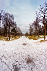 Straight Path To The Statue (k009034) Tags: 500px winter baltic countries copy space day estonia kadriorg outdoors tallinn tranquil scene clouds lamp post nature no people park path sky snow travel destinations trees teamcanon