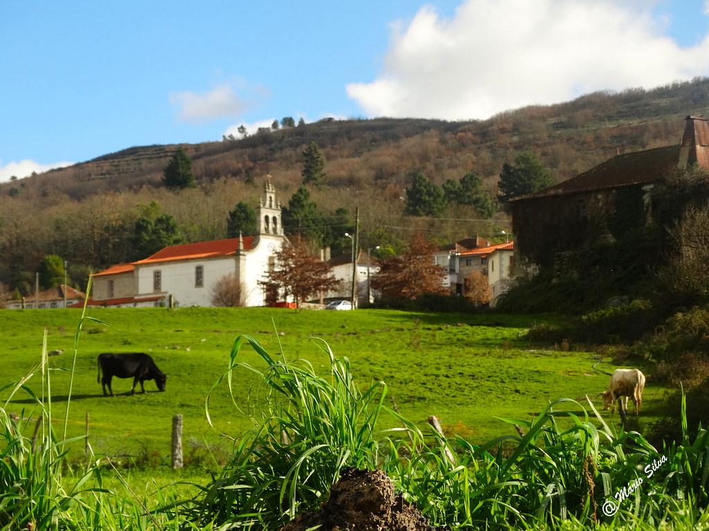 Águas frias (Chaves) - ...igreja ao fundo do prado ...