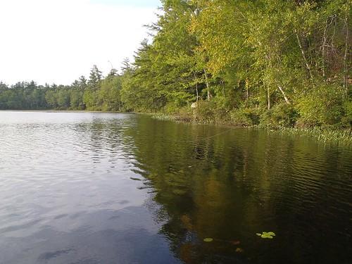 Perley Pond - www.amazingfishametric.com