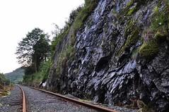 Nieużywane tory | Unused railway