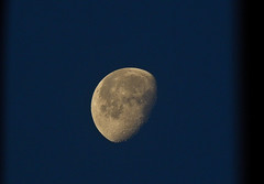 DSCN1123-2 (moon_hunter2014) Tags: sky moon dawn luna craters crater gibbous waninggibbous aning
