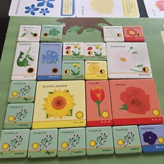 Garden Competition - เกมแข่งกันจัดสวนเอาใจกรรมการ เป็น deduction แบบเล่นเพลินๆ ไม่ซีเรียส เราจะรู้เกณฑ์การให้คะแนนของกรรมการประมาณหนึ่งในสี่ของทั้งหมดตอนเริ่มเกม และจะค่อยๆ มีข้อมูลมากขึ้น ดอกไม้พันธุ์ต่างๆ ในเกมมีจำกัด ต้องแย่งกันซื้อหรือเอาใจเพื่อนบ้าน