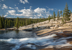 Beautiful Yosemite High Country (alicecahill) Tags: california usa nature beautiful river landscape high country yosemite yosemitenationalpark sierranevadamountains tuolumneriver droh dailyrayofhope alicecahill