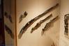 20150721-029.jpg (ctmorgan) Tags: newyork unitedstates centralpark themet pistols metropolitanmuseumofart firearms blackpowder armsandarmor flintlock wheellock armsarmor armsandarmour armsarmour blackpowderfirearms