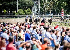Crowded Saratoga (EASY GOER) Tags: summer vacation horses horse ny newyork sports beauty race canon athletics track saratoga competition upstate running racing course event 5d ponies athletes tradition races sporting spa crowds thoroughbred equine exciting thoroughbreds markiii