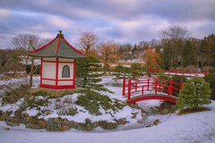 Japanese Gardens (Doug Wallick) Tags: japanese gardens winter snow bloomington minnesota normandale community college red cold evergreen