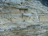 HPIM5188.JPG (ArgyleMJH) Tags: california diatomaceous diatomite geology jamboreeroad layering miocene montereyformation mudrock mudstone newportbeach orangecounty sedimentary shale siliceous thinbedded