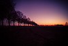 Last sunset... (Henrik Schulze) Tags: nye 24mm germany sunset last day year leica münsterland countryside
