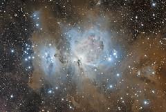 M42 - Orion Nebula (Andrew Klinger) Tags: