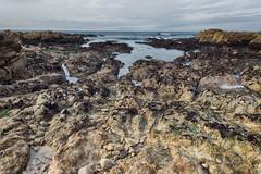 old, but new to me (nosha) Tags: 24mm landscape ca beauty shore nosha california blue ocean beautiful ais nikon maritime sea seascape nikkor coast asilomar water