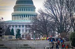 2017.01.29 Oppose Betsy DeVos Protest, Washington, DC USA 00198