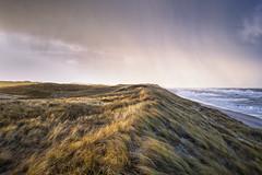 Düne am Weststrand (blichb) Tags: 2017 deutschland leicaq leicasummilux11728asph meer nordsee schleswigholstein strand sturm sylt weststrand blichb düne himmel wolken licht
