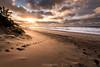 Jutland sunset (framedbythomas) Tags: denmark sunset jutland beach sand water sea ocean landscape seascape sun warm clouds cloudscape tracks