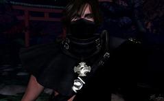 Stand For . . . (Broderick Logan) Tags: noblecreations lyrics jonathanthulin secondlife second life sl virtual avatar ninja