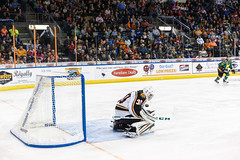 "Missouri Mavericks vs. Quad City Mallards, January 21, 2017, Silverstein Eye Centers Arena, Independence, Missouri.  Photo: John Howe / Howe Creative Photography • <a style=""font-size:0.8em;"" href=""http://www.flickr.com/photos/134016632@N02/32527846585/"" target=""_blank"">View on Flickr</a>"