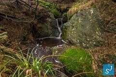 Harz 2016 II (Joon Stemmermann) Tags: harz water atumn trees garmany stone waterfall nationalpark montains green nikon tokina d3300