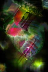 Hojas (seguicollar) Tags: imagencreativa photomanipulación art arte artecreativo artedigital virginiaseguí hojas invernadero verde rojo planta vegetal vegetación ramas