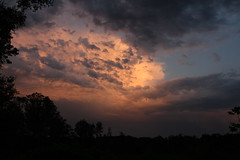Threanening (roger_forster) Tags: storm hot june clouds evening hampshire lightning newforest foxbury