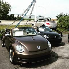 Eenie, meenie, minie mo!!! #VW #vordermanvw #beetle #vwbeetle #convertible #tdi (reg.vorderman) Tags: volkswagen vorderman vordermanvolkswagen httpvordermanvolkswagencom