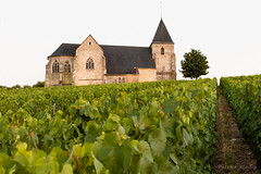 A church in the Champagne's vineyards (Patrick Mayon) Tags: summer france church landscape vineyard outdoor champagne t paysage fr vignes vignoble glise champagneardenne chavot moussy champenois